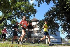 Hallwilerseelauf: Wasserschloss Hallwyl als Attraktion