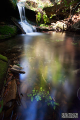 Fairytale Pool (seantaylorphotography) Tags: nature national waterfall water river falls morton walking walk hiking hike aus australia new south wales nsw explore adventure excitement beautiful landscape scenery long exposure nd10 10 stop 10stop canon 5d 5d2 5dmk2 1740 1740l