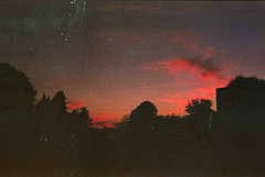 redrum (Tamar Burduli) Tags: nature landscape travel sunset analog film 35mm red clouds sky city zadar croatia trees dark tamar burduli skyline redrum