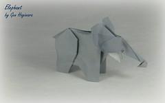 Refold: Elephant by Gen Hagiwara (Thomas Krapf Origami) Tags: elephant elefant genhagiwara gen hagiwara mammal sugetier origami paper papier papierfalten paperfolding