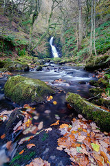 End of Autumn (Howie Mudge LRPS) Tags: dolgochfalls waterfall cascade river woods woodland forest trees leaves moss rocks boulders outside outdoors travel travelling traveler ngc nature landscape landscapes photography tourism hiddengem postcard gwynedd wales cymru uk fuji fujifilm compactsystemcamera mirrorlesscamera xtranssensor samyang samyang12mmf2ncscsx