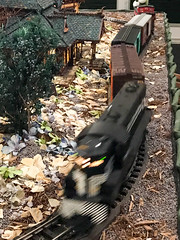 HTS-8 (Peter Parides) Tags: unitedstates christmas trains newyorkbotanicalgardens new york city newyork