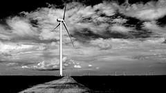 Cloud Beaters (alhawley) Tags: american americanabstract bw k3 usa abstract adastra blackandwhite cinematic clouds justpentax lightroom5 limitedsilveredition minimalist monochrome pentax pentaxart pentaxk3 pentaxlife pentaxlimited photodocumentary photoessay photojournalism socialdocumentary windfarm windmill windturbine pentaxhd15mmf4edallimited flikrexplore mtrej