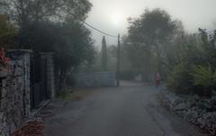 7.11.16 105 (Jeaunse23) Tags: mist fog france ardeche autumn gr ricohgrd grd