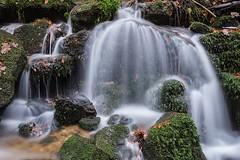 waterfall gertelbach (muman71) Tags: d610 nikon schwarzwald gertelbach wasserfall water waterfall blackforest dsc6800 2016 waterfalls landscape forest 50mm sigma50mm