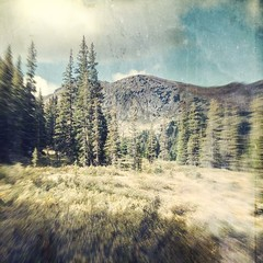 fall coming (jssteak) Tags: canon t1i square mountains colorado trees forest aged vintage grunge fall