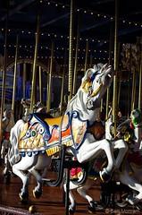 Regal Carousel (MCParradox) Tags: waltdisneyworld wdw disneyworld disneyparks magickingdom wdwmagickingdom fantasyland carousel carouselhorse