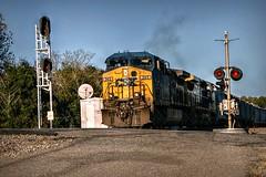CSX 365 (builder24car) Tags: railfanning benchingthefreights perspective intothesun conductor csx csx365 cw44ac hamletnorthcarolina