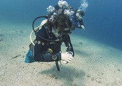 03.11 18 (KnyazevDA) Tags: diver disability undersea padi paraplegia amputee underwater disabled handicapped owd aowd scuba