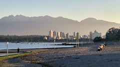 Vancouver Morn from Kits Beach (gerry.bates) Tags: vancouver city urban skyline towers highrises architecture bc canada landscape mountain coastmountain water englishbay westend beach kitsilanobeach sunrise morning man boats sailboats logs haze
