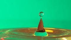 Splash (Alexandre D_) Tags: canon eos 70d tamron tamronaf70300mmf456divcusdif raynox raynoxdcr250 dcr250 macro macrophotography macrophotographie macrounlimited cheapmacro closerandcloser closeup splash splish drops drop droplet water waterdrop drip eau goutte vert green proxy yongnuo yn565ex neewer nw660iii