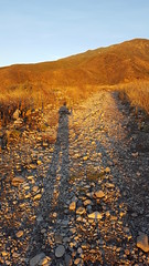 Me and my Shadow (cjacobs53) Tags: jacobs jacobsusa 116picturesin2016 scavenger hunt annual yearly shadow trail rancho cucamonga ranchocucamonga hike