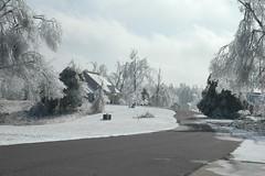 Home Sweet Home (Porch Dog) Tags: winter cold ice home nikond70 kentucky icestorm misery nikond garywhittington january2009