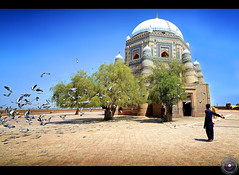 Mausoleum of Shah Rukn-e-Alam, Multan (Usman Hayat ~back~) Tags: pakistan nikon angle pigeons wide fast f 28 nikkor lahore shah hayat alam d800 usman multan 1424 uhayat rkne