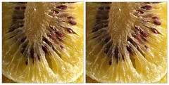 IMG_5800  (crosseye 3D) (yoshing_BT) Tags: stereophotography 3d crosseye crosseyed stereoview stereograph driedfruit kiwifruit crossview    corsseye   corsseye3d