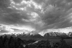 Teton Shower (WildlifeandMore.com) Tags: trees blackandwhite mountain snow mountains tree beautiful stone clouds high peak grand bluesky jackson tips download snakeriver yellowstonenationalpark prints jagged yellowstone peaks teton tetons majestic tops jacksonhole snowcovered grandtetonnationalpark tetonvillage tetonvalley tetoncounty snakeriveroverlook bigprints coveredinsnow highelevation printsforsale jaggedpeaks downloadsforsale wildlifeandmore wildlifeandmorecom