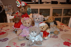 Family Plush (Aurelmistinguette) Tags: family famille fluffy plush collection mignon peluche kawa aurelmistinguette