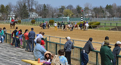 2013-04-07 (22) r1 pony sprints (JLeeFleenor) Tags: kids youth children caballo cheval photography photos uma cal rider cavallo cavalo pferd equestrian kuda alogo equine pimlico hest soos hevonen cuddy paard cavall kon koin  hst ceffyl   ko faras hestur  perd  konj    capall beygir yarraman youngriders pfeerd ponyracing marylandhorseracing marylandracing