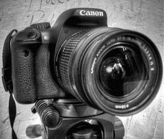 Canon EOS Rebel t2i (Imagenesis Photographers) Tags: camera white black canon photography eos rebel photo photographer powershot professional dslr hdr a470 550d kissx t2i