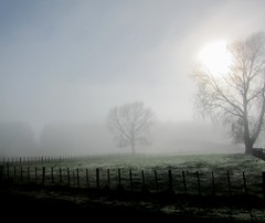Misty Morning In Winter (Mary Faith.) Tags: blinkagain