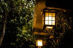 Los faros (smenaliaga) Tags: autumn santiago winter light lighthouse verde green fall primavera luz lamp faro casa flora narnia vegetation entrada otoo headlight lantern vegetacin hojarasca ampolleta
