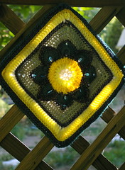 Julie's June (raccoon-00) Tags: flower square crochet sunlit diamondshape 113in2013 27framed