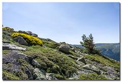 _JRR2773 (JR Regaldie Photo) Tags: mountain snow rocks nieve lagunas sierrademadrid peñalara jrregaldiephoto