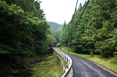 Entering the mountain (A7design1) Tags: road mountain bike japan training cycling tokyo climb view hill lookout 日本 東京 saitama okutama 山 hillclimb 自転車 埼玉 景色 サイクリング 絶景 バイク 正丸峠 oume 天目指峠 奥多摩 toge ヒルクライム 山岳 yamabushi amamezasu shomaru ロードバイク 山伏峠 大梅