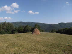 / Ready for the winter (Deian Vladov) Tags: trees winter summer sky mountain nature clouds rural mont