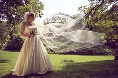 veil (Jen MacNeill) Tags: wedding summer bride veil pennsylvania marriage wed pa gown weddingday canon6d lauxmontfarm centralpennsylvaniaweddingphotographer jennifermacneilltraylor jmacneilltraylor jennifermacneill jennifermacneillphotography