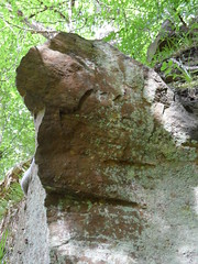Quiff face (Nekoglyph) Tags: trees green nature face leaves rock stone mouth hair eyes head yorkshire elvis lichen quiff foundface anthropomorphism fallingfoss