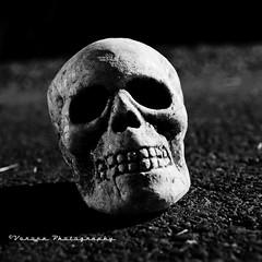Nocturnal skull () Tags: light usa white halloween night america death skull shadows nocturnal united samhain horror states asphalt ornamental