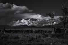 Take on me (Dave Arnold Photo) Tags: ranch blackandwhite bw usa cloud mountain storm newmexico west windmill monochrome beautiful field weather fence wonderful photography mono us photo blackwhite photographer image farm awesome arnold picture stormy pic photograph monsoon western nm wildwest thunder severeweather aeromotor farmyard ranchland catroncounty horseranch davearnold newmex thunderstom nmex westernnewmexico catronco horsesprings davearnoldphotocom mygearandme ranchyard
