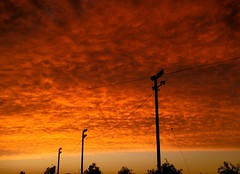 """Clouds like a waves in the sky at  Dawn "" Foto:El Lemus (El Lemus) Tags: california red urban orange sun sol yellow clouds mexico dawn rojo desert el amanecer amarillo cielo nubes urbana desierto baja naranja mexicali lemus"