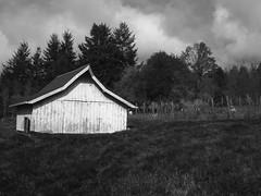rustic (zenobia_joy) Tags: autumn bw fall clouds barn island weekend goats pasture marrowstone