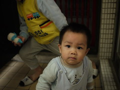 37547776 (wdshieh) Tags: 20110121