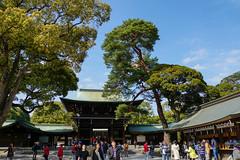 Meiji Shrine 2 - Tokyo (T.30) Tags: city temple japanese tokyo shinjuku shrine asia god sony traditional pray shibuya  mystical alpha tamron 18200 meiji  nex  mirrorless a6000  alphanex sonya6000 sonyilce6000