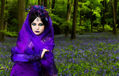 On a Bluebell path I stepped (Azadeh Brown) Tags: bluebells woods purple vampire goth vogue femmefatale bluebell darkphotography darkart vampiric bluebellwoods wgw womaninpurple newromantic gothbride gothwedding darkbeauty darkfairytale gothveil persianprincess purplewedding purpleveil micheldeverforest persianqueen purpleheaddress purplebride persianvampire wgwapril2015
