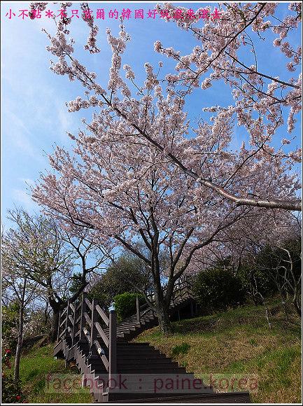 麗水海上纜車與紫山公園 (65).JPG