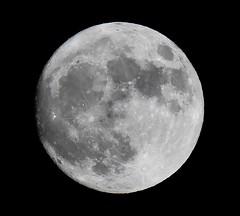 Super Supermoon of November 13, 2016 (KoolPix) Tags: supermoon moon planet sky universe koolpix naturephotography nature naturephotos naturephotographer animalphotographer wcswebsite nationalgeographic fantasticnature amazingnature wonderfulbirdphotos animal supersupermoon superdupermoon jaykoolpix