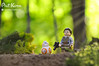 """I didn't know there was this much green in the whole galaxy,"" Rey said (Phil Korn) Tags: lego lego365 legostarwars starwars minifigures minifig green explore outdoors nature force forest nikon rey bb8 awakens toys philkorn21 photography afol takodana vacation spain tenerife"