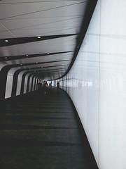 158/366 (abnormalbeauty.) Tags: white lights corridor station stpancras kingscross screen perspective london