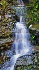 Life Stream (Jukai Fujiki) Tags: sony ilce6000 selp18105g water waterscapre waterfall landscape stream nature national naturaleza rock wild winter spring trekking hiking outdoor sunlight hongkong colors