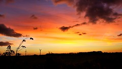 Kleurrijk begin van de dag (Omroep Zeeland) Tags: zonsopkomst westkapelle kleurrijk lovezeeland omroepzeeland
