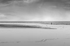 Punta Arenas (Medigore) Tags: blancoynegro byn street 50mm canont3i chile medigore blanco negro monocromtico profundidad sombras nieve punta arenas ciudad agua aire libre snow city blackandwhite landscape light sea roads byw ngc person alone clouds