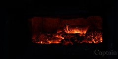 Furnace (PhotographyByCaptain) Tags: fire coal logs embers furnace warm warmth