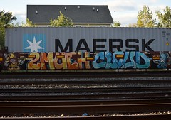 2MUCH CLOUD (TheGraffitiHunters) Tags: graffiti graff spray paint street art colorful freight train tracks benching benched 2 much 2much cloud fire vs water character stack intermodal