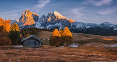 Italy. Dolomites. Autumn Evening on the plateau of Alpe di Siusi (naumenkophotographer.com.ua) Tags: alpe alpine alps autumn background beautiful beauty di dolomites dolomiti europe green highest hiking italy landscape larch meadow mountain natural nature ortisei outdoor pasture path peak rock sassolungo scenery scenic seuc siusi sky travel tyrol view pentax panorama