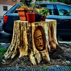 #roma #rome #italia #italy #tree #albero #tronco #sculpture #scultura #legno #wood #massimopisani (massimopisani1972) Tags: instagramapp square squareformat iphoneography uploaded:by=instagram instagram camera cameraphone iphone massimopisani roma rome italia italy tree albero tronco sculpture scultura legno wood