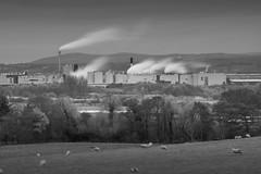 90% Winter (Rob Pitt) Tags: sunset burton shotton paper mill longexposure factory blackwhite monography wirral cheshire deeside